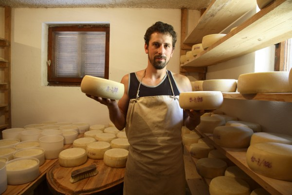 Cheese farm in Bled